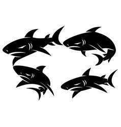 shark logo badge design set concept template vector image