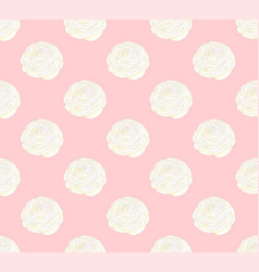 White ranunculus on pink pastel background vector