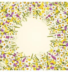 Wild flower frame vector image