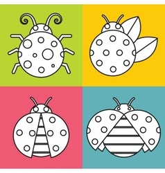 White ladybugs with stroke on color background vector image vector image