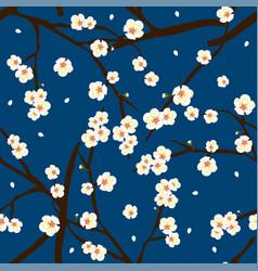 white plum blossom flower on indigo blue vector image