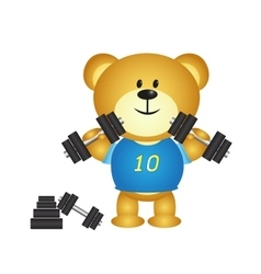 Bear cartoon boy playing barbell vector image