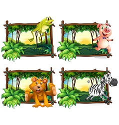 Four frames of wild animals in the jungle vector