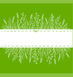 green background with hand drawn herbs and flowers vector image