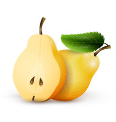 pears isolated on white background vector image