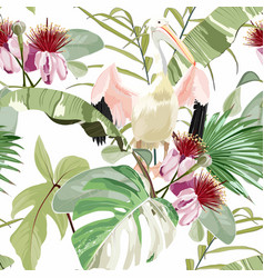 pelican bird and exotic flowers palm leaves vector image