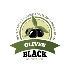 set of black Olives with leafs vector image