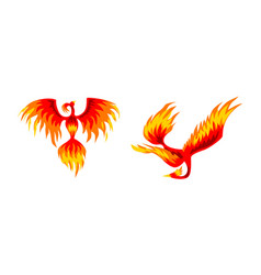 set phoenix firebirds mythical fairy tale bird vector image