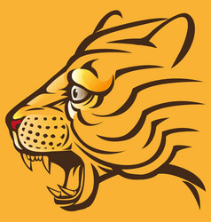 Tiger head modification vector