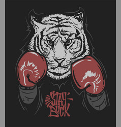 Tiger in boxing gloves and lettering print design vector