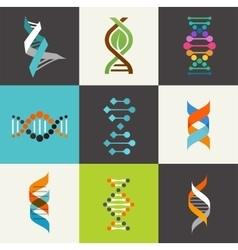 DNA genetic elements and icons collection vector image