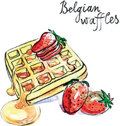 Watercolor belgian waffles vector