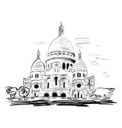 Basilica vector