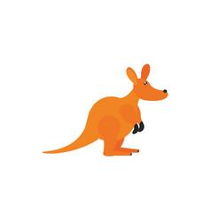 kangaroo animal wildlife australia icon on white vector image