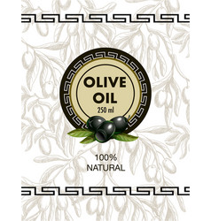 label for olive oil with realistic olives vector image