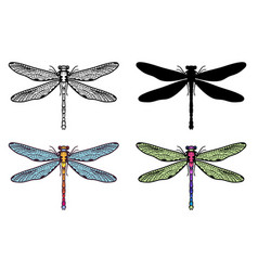 Set of hand drawn stylized dragonflies outline vector