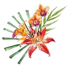 watercolor lilies vector image