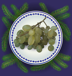 bunch of grapes on plate vector image