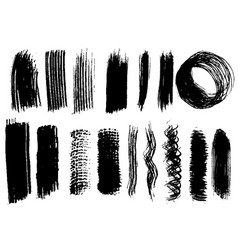 detail brush paint stroke collection vector image