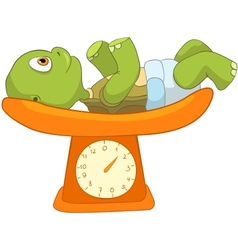 Funny Turtle Baby Weighing vector