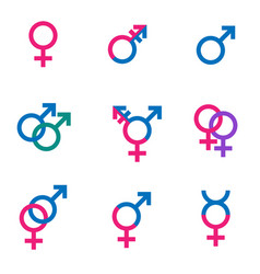 gender symbol set sexual orientation icons - male vector image