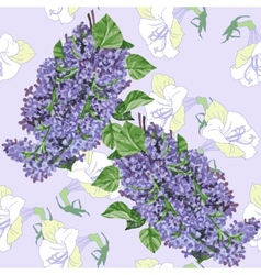 Seamless pattern with lilac and white flowers vector