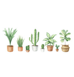 watercolor set with home plants in ceramic vector image