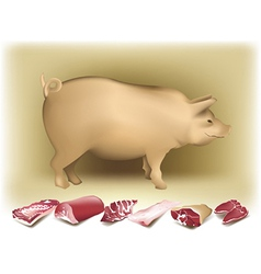 Pig and pork vector image vector image