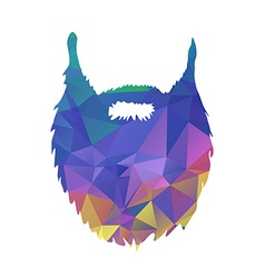 Abstract triangles low poly beard isolated on vector image vector image