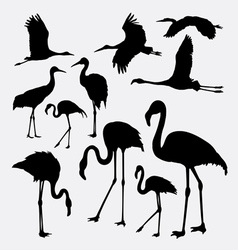 Flamingo in action silhouettes vector image vector image