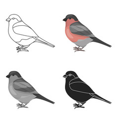 Bullfinch icon in cartoon style isolated on white vector
