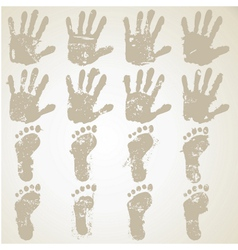 Collection hands and feet prints vector
