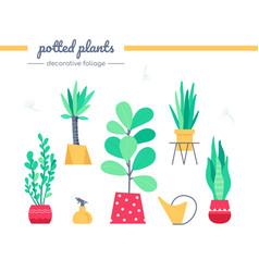 decorative foliage collection - set vector image