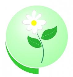 eco green button vector image