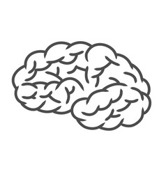 Human brain icon isolated on white vector