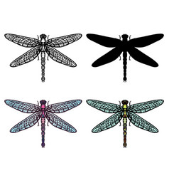set of hand drawn stylized dragonflies outline vector image