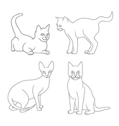 set of mother cat vector image