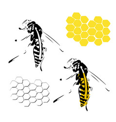 Wasp honeycomb black yellow isolated on white vector