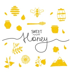 Design elements honey coloured vector image