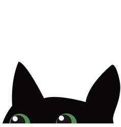 Black cat hiding vector