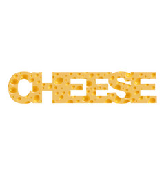 cheese background inscription vector image