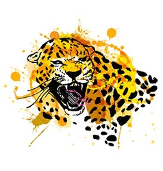 Colored hand sketch head roaring jaguar vector
