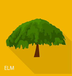 elm icon flat style vector image