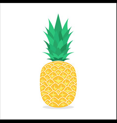 Pineapple fruit summer fruits for a healthy and vector