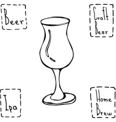 tulip beer glass hand drawn vector image