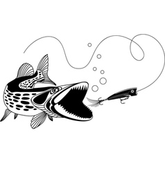 Pike and Popper vector image