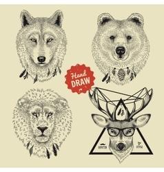 sketch of wild animal heads bear wolf deer vector image