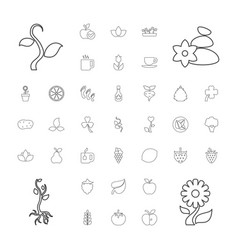 37 leaf icons vector