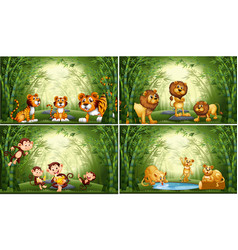 animals in bamboo forest vector image