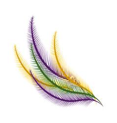 elegant feather cartoon vector image
